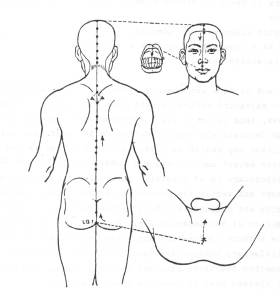 Kramer acupuncture diagram