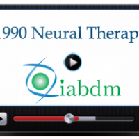 1990 Neural Therapy Conference