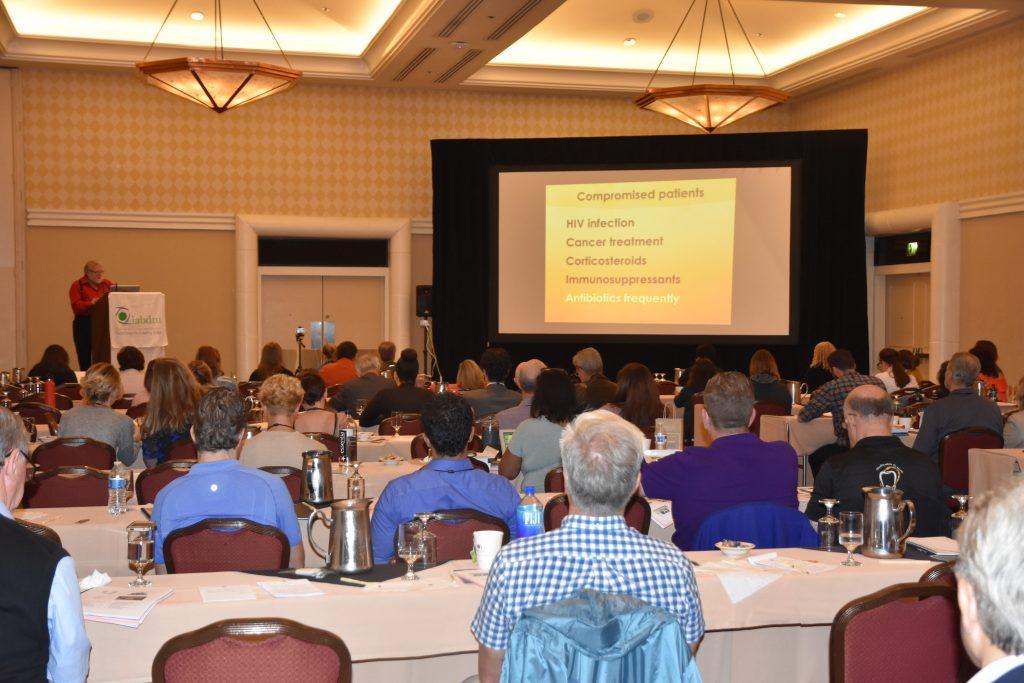 IABDM annual meeting session