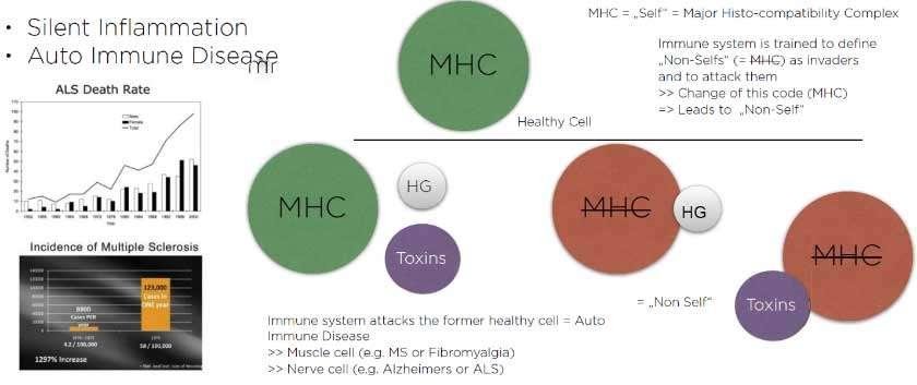 diagram of autoimmune disease