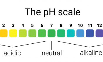 The Importance of Nutrition & pH in Dentistry